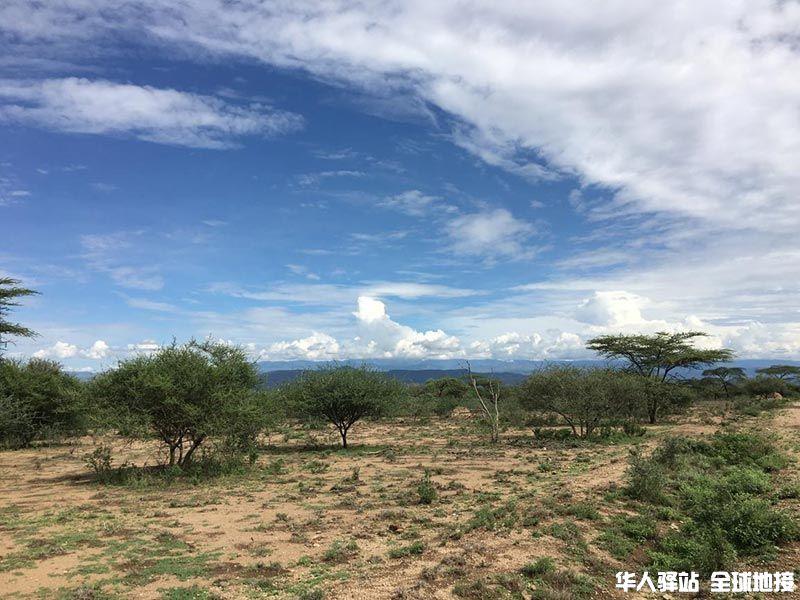 埃塞俄比亚地接LOGO